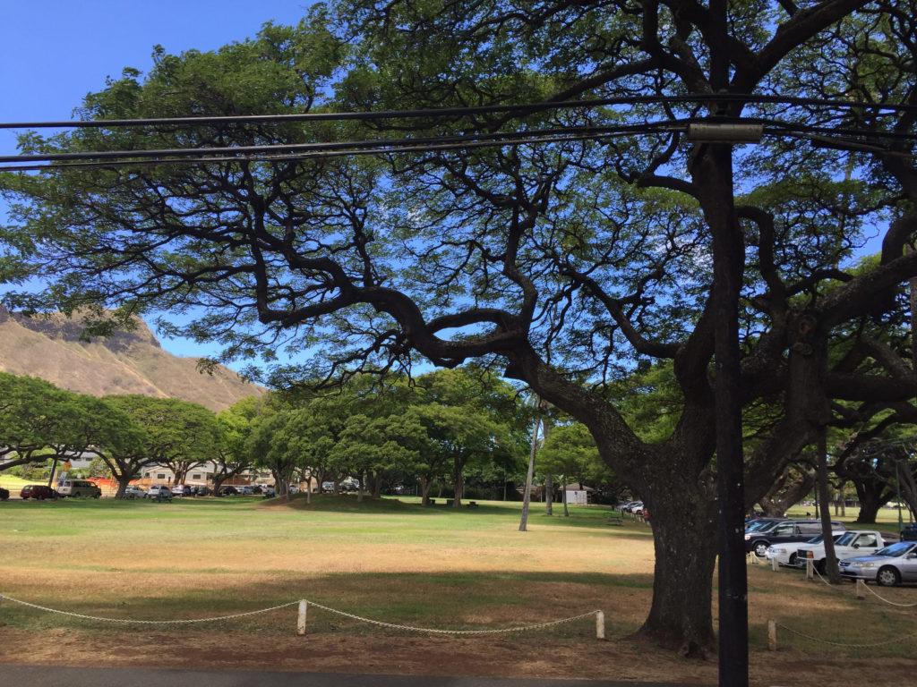 ハワイの公園